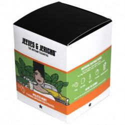 Jeeves & Jericho Bylinkový čaj Mojito Mint, 15ks